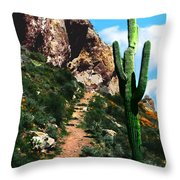 Arizona Saguaro Tonto National Monument Throw Pillow