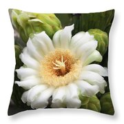Arizona State Flower The Saguaro Blossom Throw Pillow