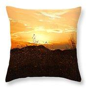 Arizona Sunset II Throw Pillow