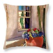 Arizona Window Throw Pillow