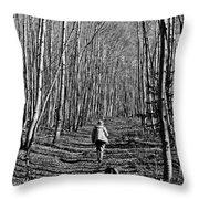 Arizona Winter Trail Throw Pillow