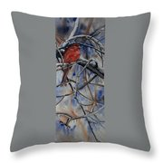 Arkansas Cardinal Throw Pillow