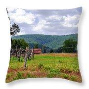 Arkansas Farmland Throw Pillow