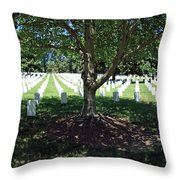 Shade And Light Throw Pillow