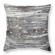 Around Birch Throw Pillow