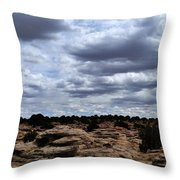 Around The Ranch Throw Pillow
