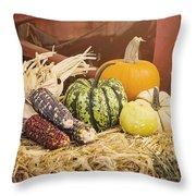 Arrival Of Autumn Throw Pillow