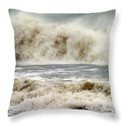 Arrival Of Sandy Throw Pillow