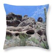 Art 1904 American Landscape Cactus Stone Mountains And Skyview By Navinjoshi Artist Toronto Canada Throw Pillow