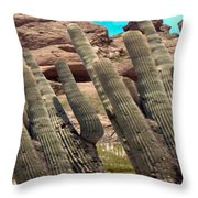 Art No.1898 American Landscape Cactus Stone Mountains And Skyview By Navinjoshi Artist Toronto Canad Throw Pillow
