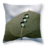 Art Of Balance Throw Pillow