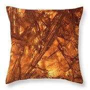 Art Of Ice 4 Throw Pillow