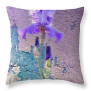 Art On Plaster Throw Pillow