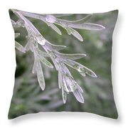 Artemesia Powis Castle Throw Pillow