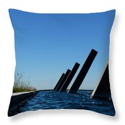 Artesa Winery Sculpture Pond Throw Pillow