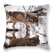 Artful Crossing Throw Pillow