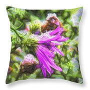 Artistic Aster In First Snow Fall 2 Imp 2-2 Throw Pillow