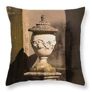 Artistic Fountain Throw Pillow