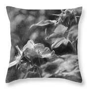 artistic painterly Black and white monochromatic two dogroses summer 2014 Throw Pillow