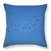 Artistic Painterly On The Way To Summer Stretch Of Geese Moving North Throw Pillow