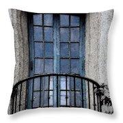 Artistic Window Throw Pillow