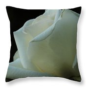 Artistry In Bloom Throw Pillow