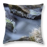 Artistry In Ice 20 Throw Pillow