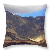 Artist's Palette #2 Throw Pillow