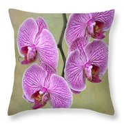 Artsy Phalaenopsis Orchids Throw Pillow