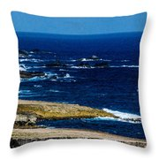 Aruba Coast Throw Pillow