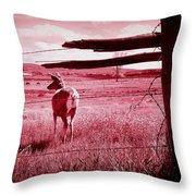 As Bambi Sees It Throw Pillow