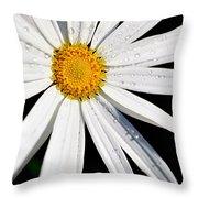 As Bright As A Daisy... Throw Pillow