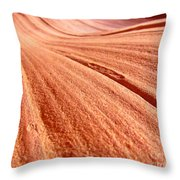 As Far As The Eye Can See Throw Pillow