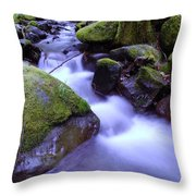 As If Heaven Was A Calmly Place Throw Pillow