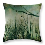 As Night Apaproaches  Throw Pillow
