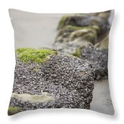 As You Leave Throw Pillow