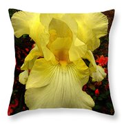 Ascension Throw Pillow