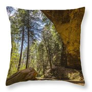 Ash Cave Throw Pillow