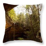 Ash Cave 2 Throw Pillow