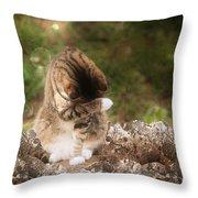 Ashamed Throw Pillow