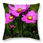 Asheville Wildflowers Throw Pillow