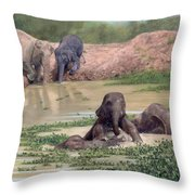 Asian Elephants - In Support Of Boon Lott's Elephant Sanctuary Throw Pillow