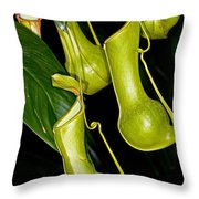 Asian Pitcher Plant Throw Pillow
