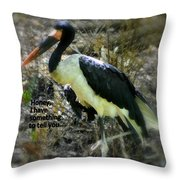 Asian Stork With Message Throw Pillow