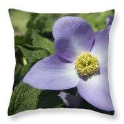 Asian Woods  1513 Throw Pillow