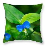 Asiatic Dayflower Throw Pillow