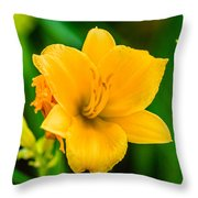 Stella De Oro Lilly Throw Pillow
