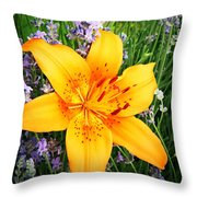 Asiatic With Lavender  Throw Pillow