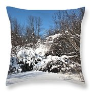 Asleep Under The Snow Throw Pillow