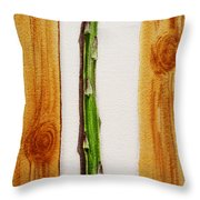 Asparagus Tasty Botanical Study Throw Pillow